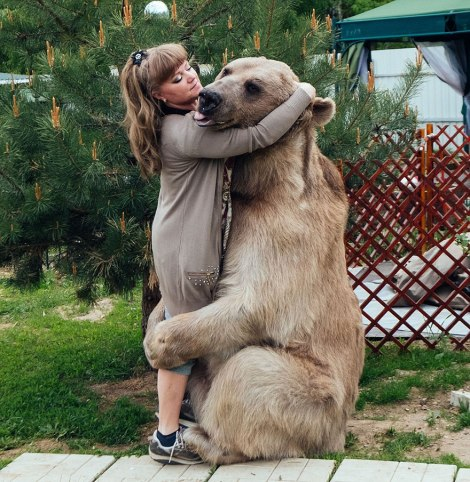 adopted-bear-russian-family-stepan-a13