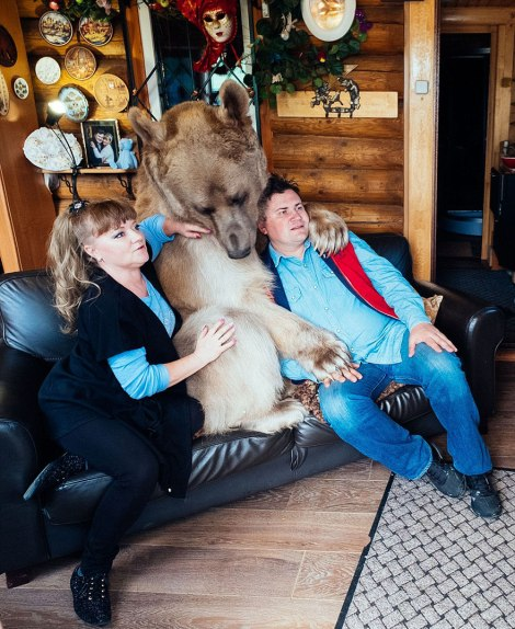 adopted-bear-russian-family-stepan-a17